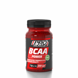 bcaa_power_250_g-500x500